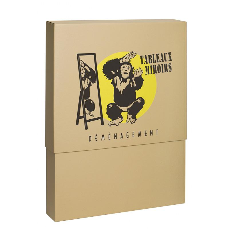 carton demenagement